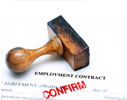 Employment contract from participating employers in the EU Blue Card Network